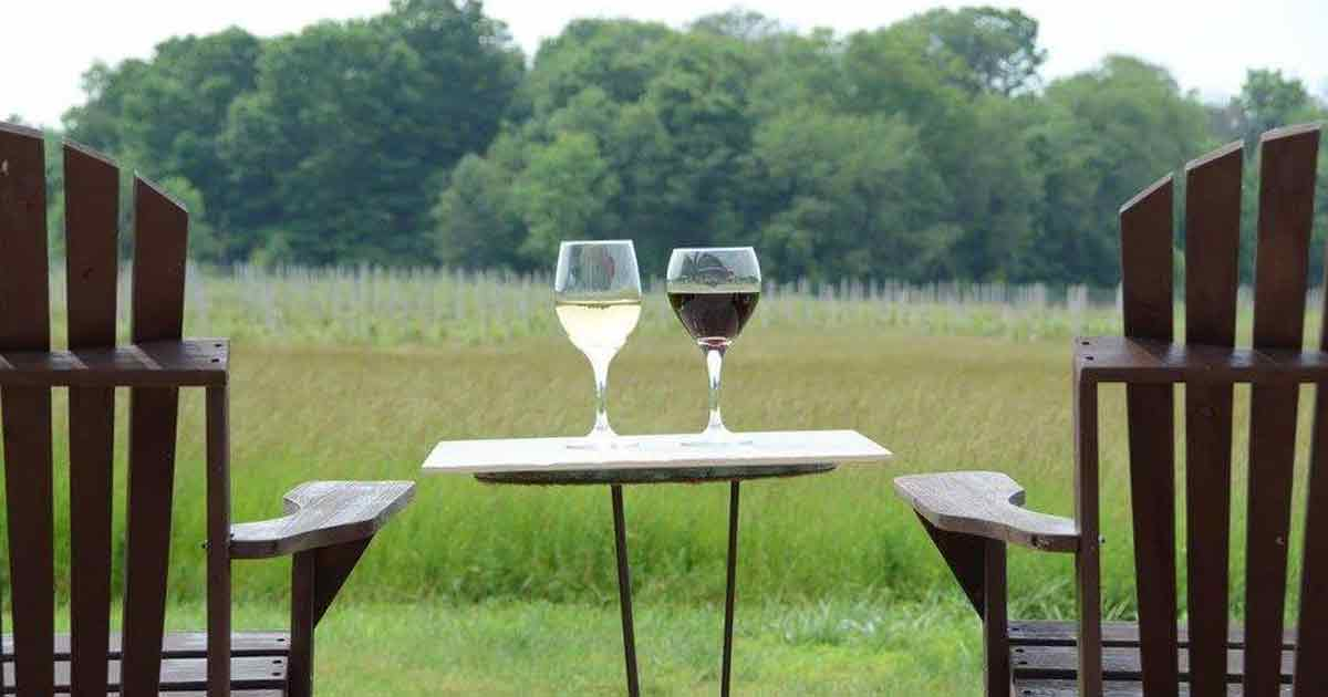 michigan-weekends-WineTrail